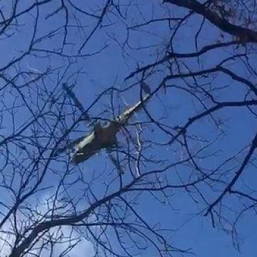 VIDEO: Bistrițenii, SPERIAȚI! Ce e cu avioanele și elicopterele Forțelor Aeriene ce zboară deasupra orașului