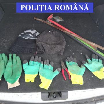 Spărgătorii a 16 case de vacanță, prinși de polițiștii! CE prime pedepse au primit: