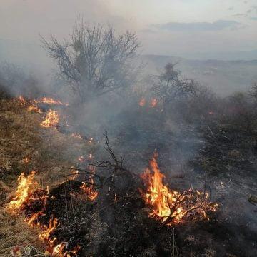 FOTO: Focuri lăsate nesupravegheate, transformate în incendii de vegetație