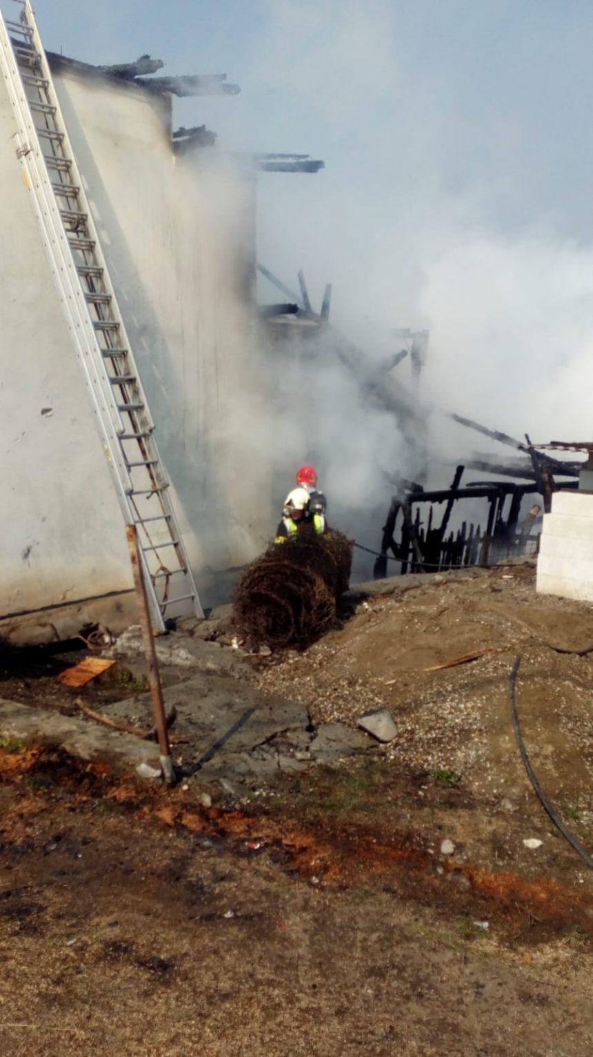 FOTO: Incendiu puternic la Budac!