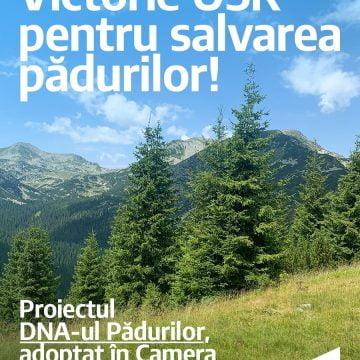 O victorie uriașă pentru mediu! Proiectul USR, de înființare al unui DNA al pădurilor, a fost adoptat de Camera Deputaților