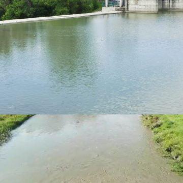 FII REPORTER: Alba – neagra! Nu, nu jocul! Râul Bistrița înainte și după stația de tratare a apei
