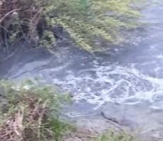 Autodenunțul Aquabis a ajutat Garda de Mediu să afle cine poluează râul Bistrița