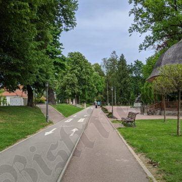 FOTO/VIDEO – PUSTIU: Bistrițenii au fost rezervați cu ieșitul la plimbare