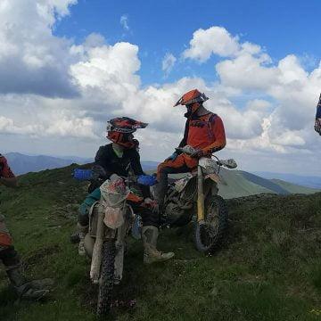 NU rupeți bujorii de munte!! Lăsați-i să fie zdrobiți de motociclete!!!