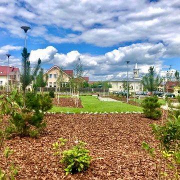 Cristian Niculae: Parcul din Subcetate e gata! Vom amenaja și două parcuri pentru animale de companie