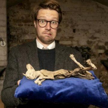 GHINION: Nu și-a dorit deocamdată nimeni să cumpere la licitație mumia pisicii descoperite în zidul unei case din Bistrița…