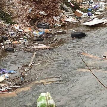 TUPEU: Rodnenii și mai mulți primari vor ca Apele Române să curețe râurile de gunoaie