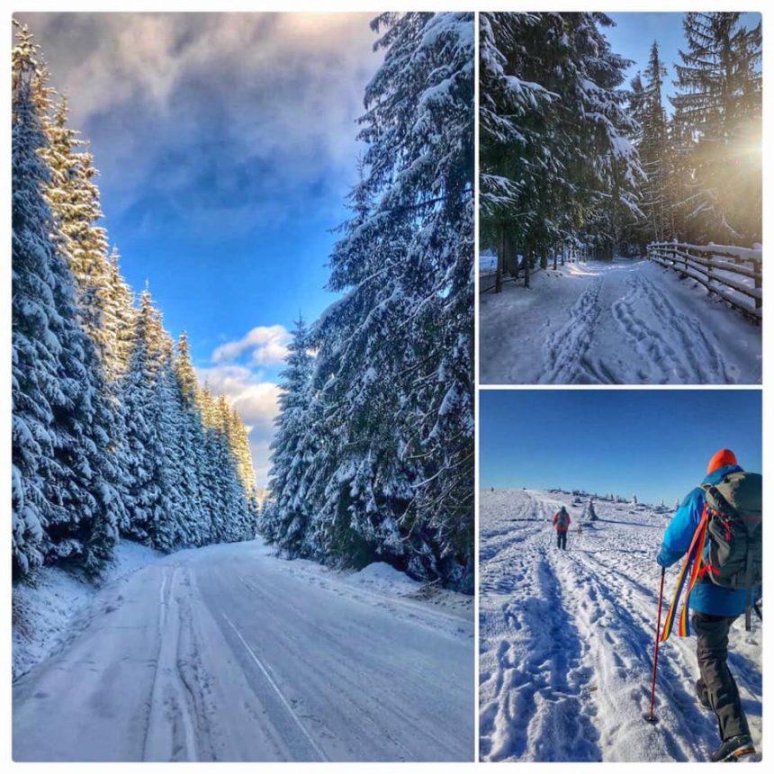 Descoperă iarna și frumusețea munților noștri, străbătând cele 8 trasee de drumeții din Poarta Transilvaniei