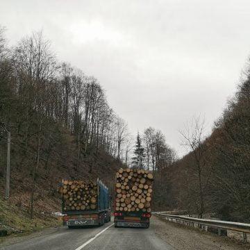 FOTO: Un camion încărcat cu lemne depășește, pe linie continuă și în curbă, pe un altul