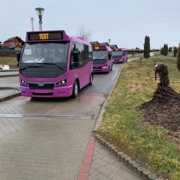 """FOTO – Oficial, Becleanul este prima localitate din județ cu transport în comun """"verde"""". Primele autobuze electrice au ajuns"""