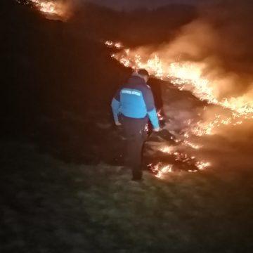 FOTO/VIDEO: Jandarmii bistrițeni, din nou pompieri! Au stins un incendiu de vegetație
