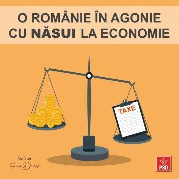 Senatorul Ioan Deneș (PSD BN): Economia națională este în derivă. Solicităm demisia ministrului Economiei