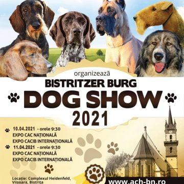 Bistritzer Burg Dog Show, amânat cu doar câteva zile înainte!