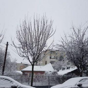 Rostul de dimineață: Peisaje de iarnă… Ninge în aprilie, la Bistrița