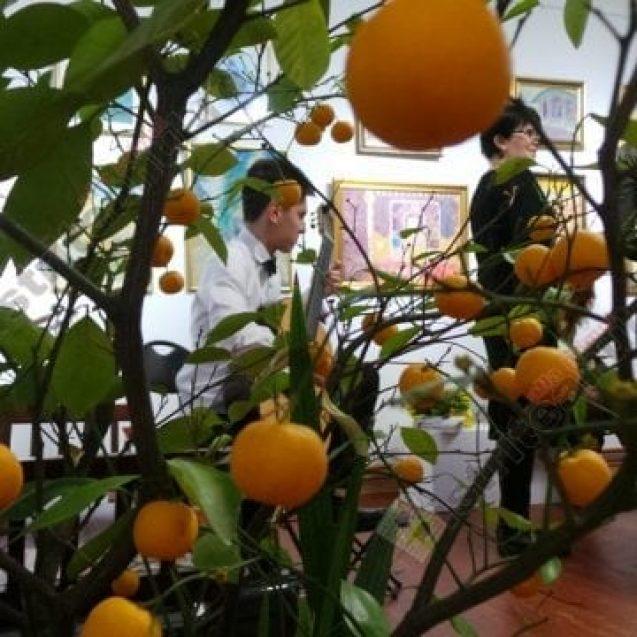 Rostul de dimineață:  Spânzurat – plutind în aer – portocaliu. Fără mâini, fără picioare…