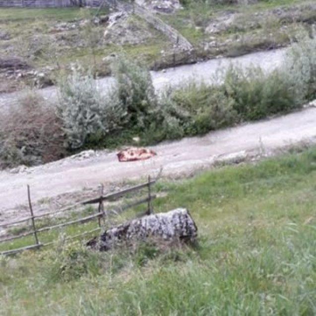 ANIEȘ: Dispărut de câteva zile, găsit în albia râului