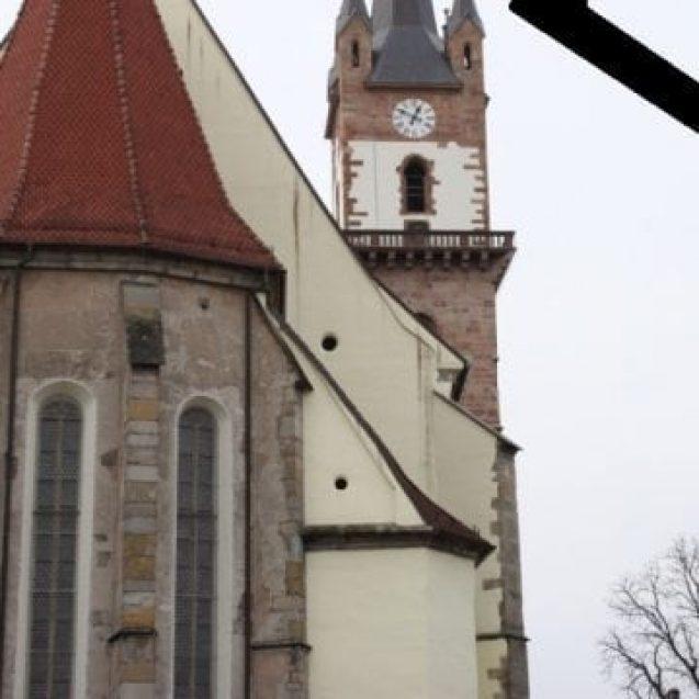 RUȘINE… A murit umanitatea și la Bistrița…?!?
