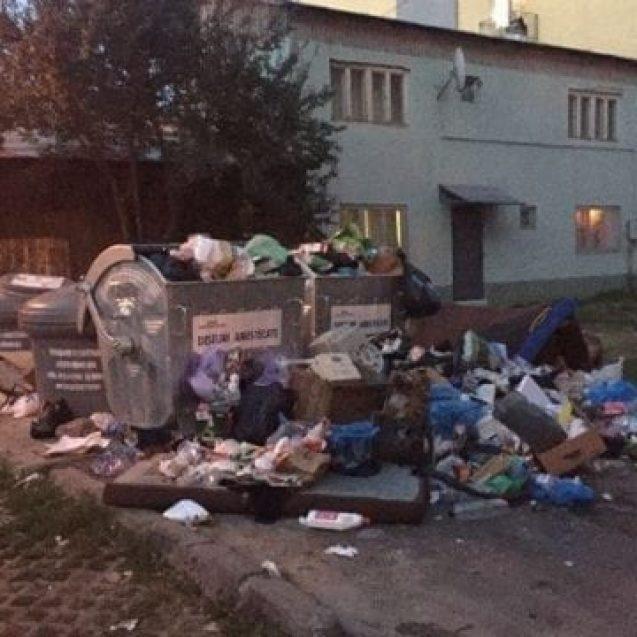 VIDEO: Nesimțire și gunoaie, în prag de sărbătoare…