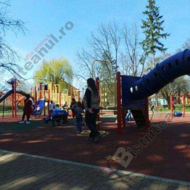 Rostul de dimineață:  Apariție neobișnuită ieri, în parcul din Bistrița…!
