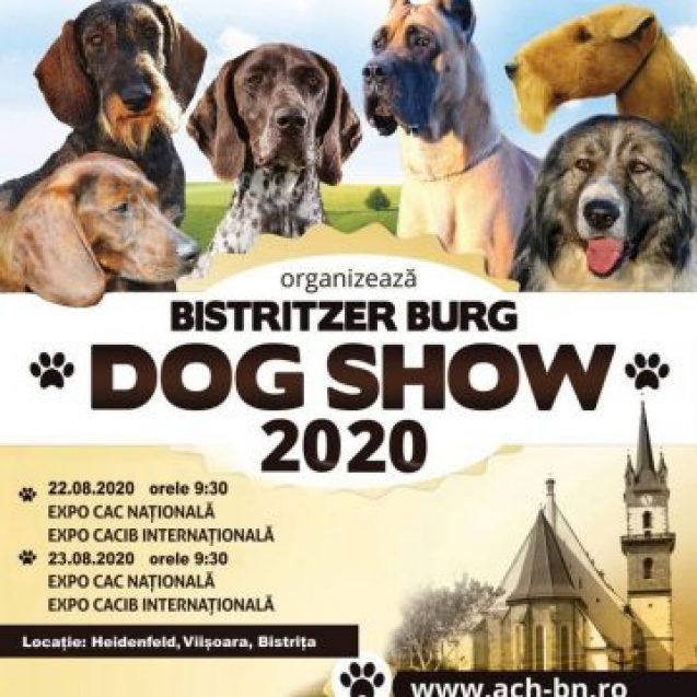 Azi, ultima zi de înscriere pentru Bistritzer Burg Dog Show 2020! CÂND va avea loc evenimentul: