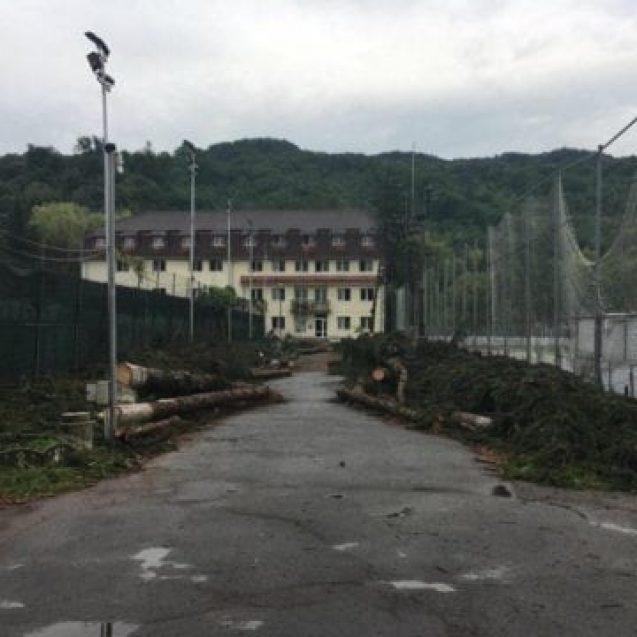 Brazii de la stadion, puși la pământ, să facă loc unor terenuri de tenis moderne