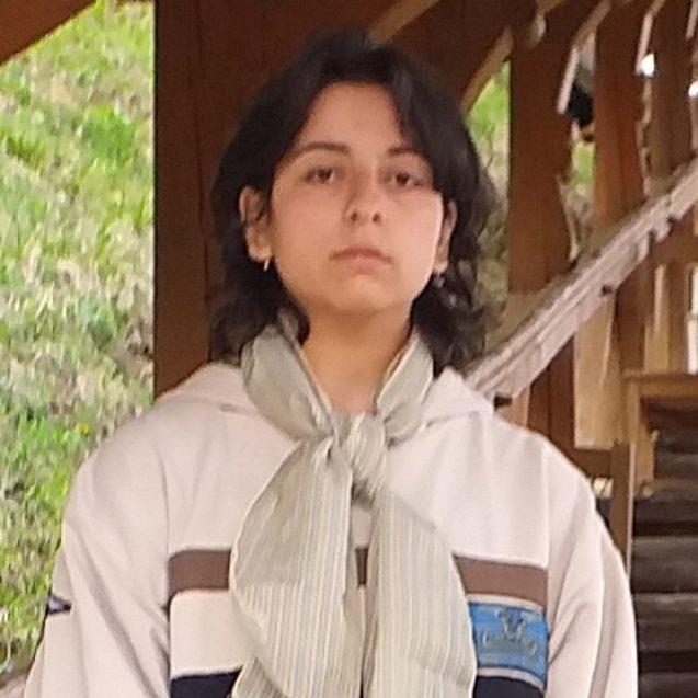 O copilă de 13 ani din Bistrița a dispărut fără urmă! UPDATE: Aceasta a fost găsită