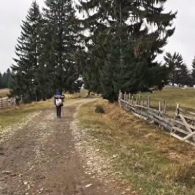"""VIDEO: O experiență unică, în Bistrița-Năsăud! """"M-am simtit ca într-o altă Românie"""""""