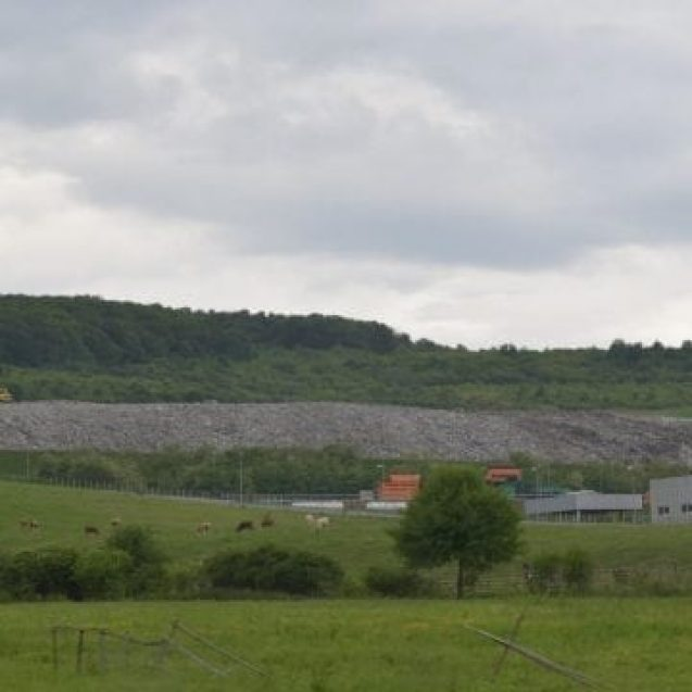 Primarul comunei Dumitra, luat la întrebări de instituțiile de mediu, din cauza planului de a rade 10 ha de pădure