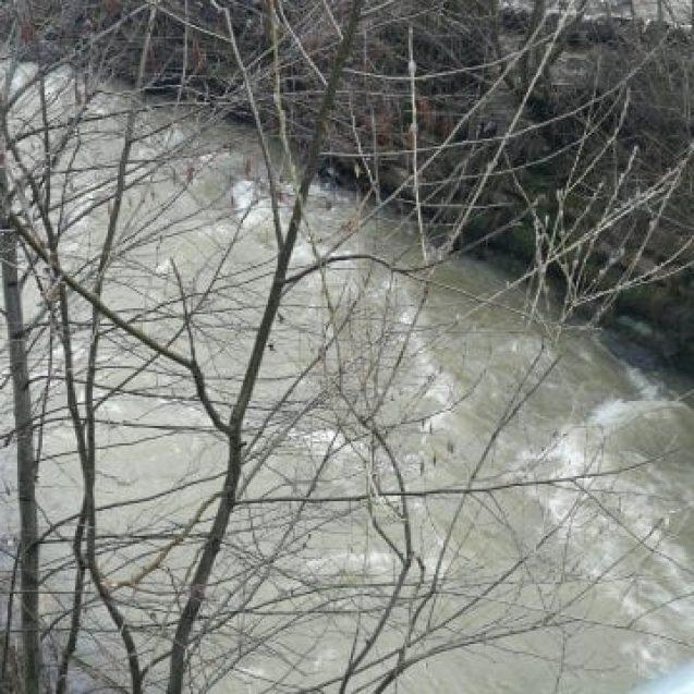 Descoperire macabră la Fiad! Un bărbat a fost găsit mort, într-un pârâu