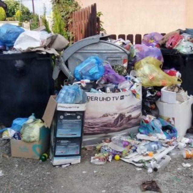 Sute de bistrițeni amendați că au aruncat gunoiul aiurea!