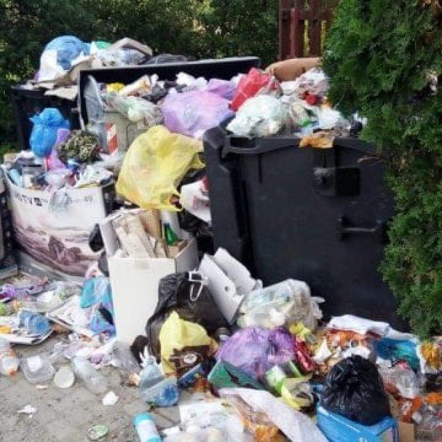 A început sancționarea celor care aruncă aiurea gunoiul. Cea mai mare amendă dată de Poliția Locală: 500 de lei