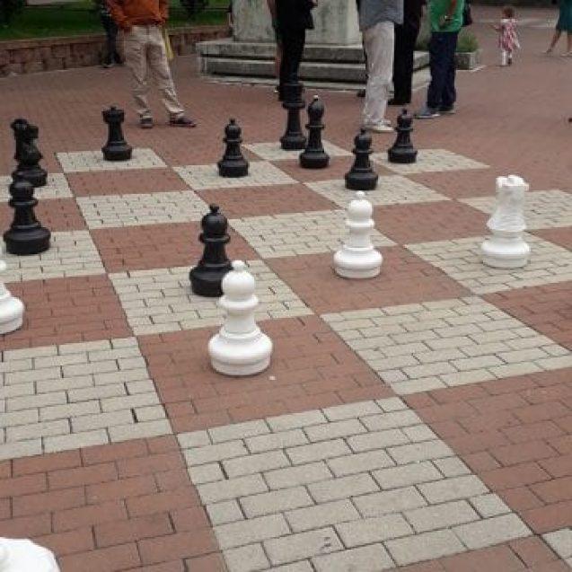 Luați la rost, pe motiv de șah în parc!