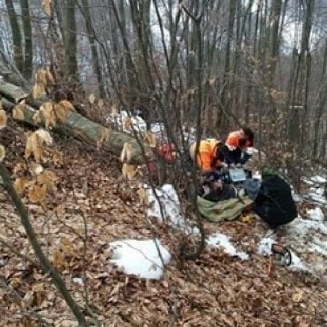 ANIEȘ: Accident în pădure! Echipajele medicale nu pot ajunge acolo!