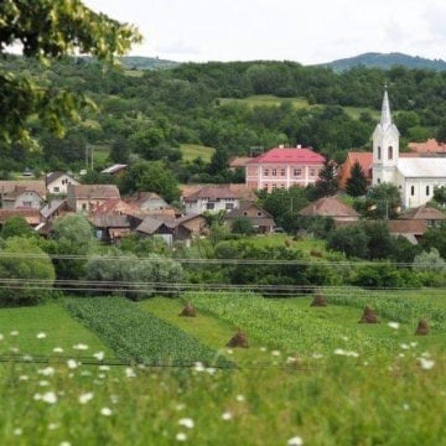 Drumul peste dealuri de la Șieuț la Monor trece printr-un basm de flori… experiențele primilor temerari ai Via Transilvanica